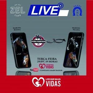 HARAS ZEL: PARCEIRO DA VIDA