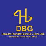 H DBG