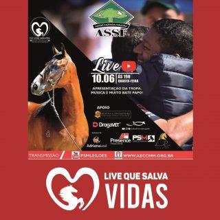 LIVE QUE SALVA VIDAS: HARAS FIGUEIRA